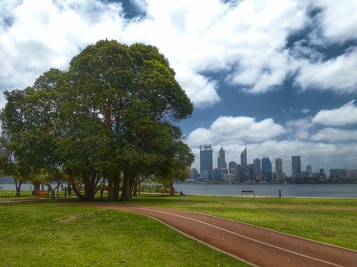trees bomen perth panasonic bike path lane skyline skyscrapers south bank swan river rivier wolken clouds wolkenkrabbers lumix dctz90 uitzicht view fietspad grass lawn gras grasveld western austalia west australië
