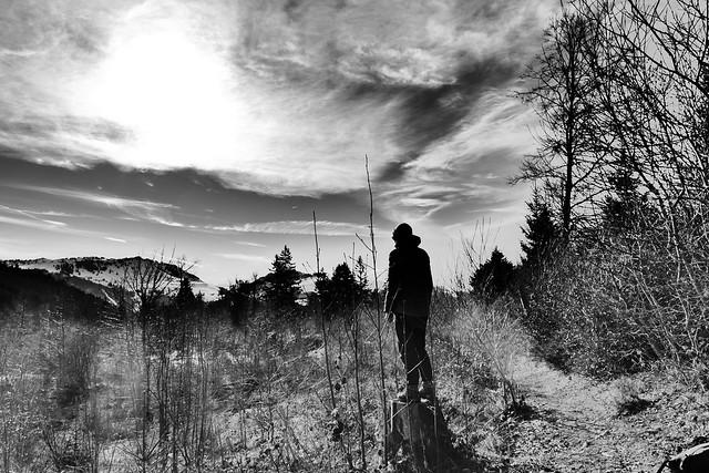01.09.20.Dans La Forêt