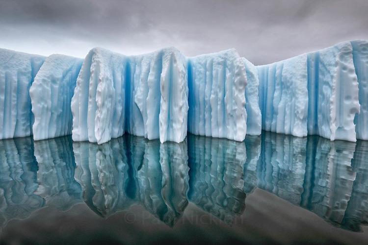 Inspiração: Paul Nicklen