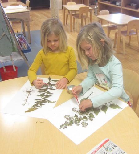 gluing plants