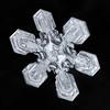 Snowflake 878