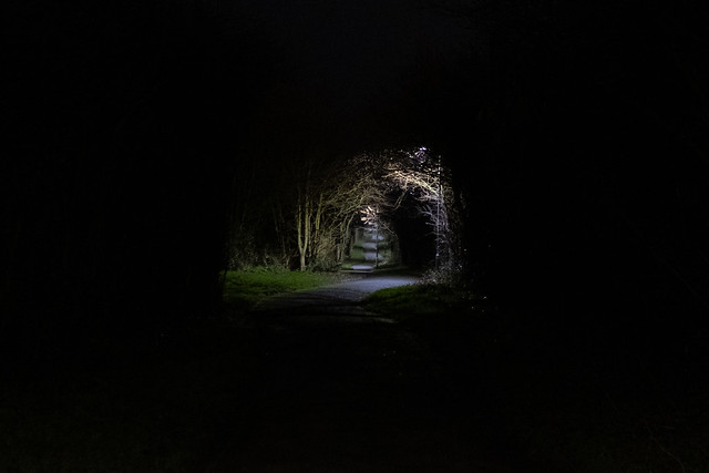 Pathway through the darkness