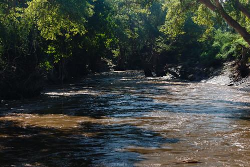 Ewaso Nyiro River