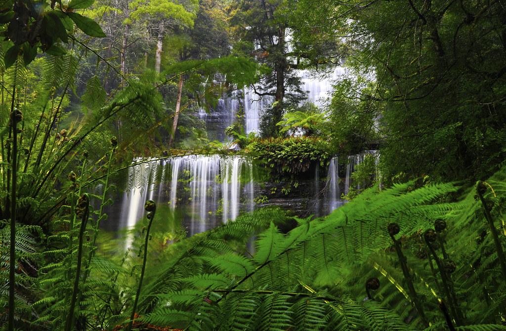 Russell Falls: Upper Tier . . .