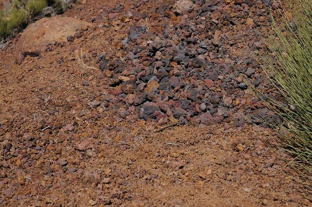 Farbig verwitternde, vulkanische Schlacken; Region Montaña Izaña, Teneriffa (24)