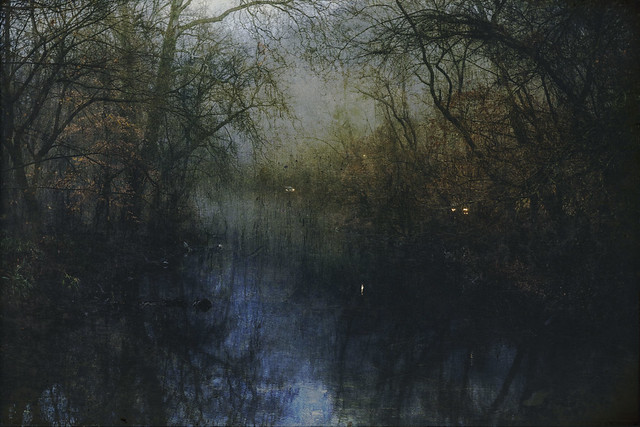 Lansdowne evening Stream5