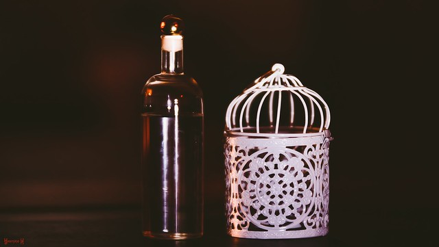 The bottle and the white cage - 7954