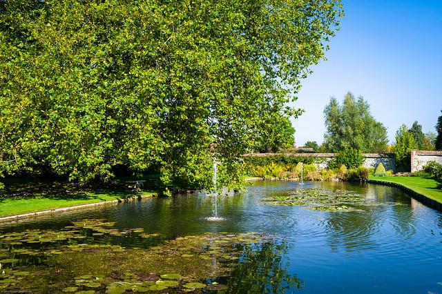 The Pond, St. Cross