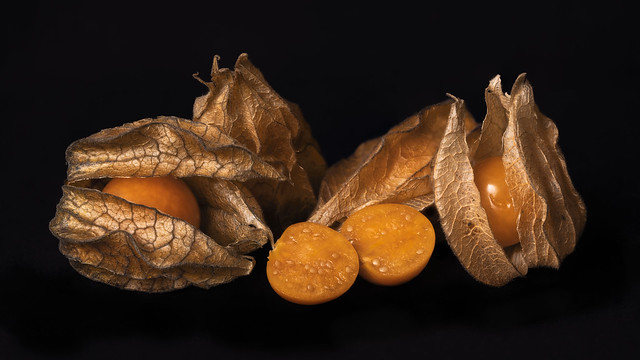 physalis survey - Physalis Studie