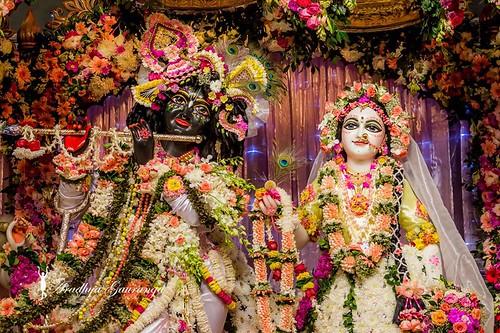 ISKCON Mayapur Deity Darshan 10 Jan 2020