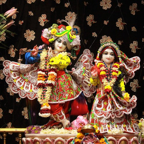 ISKCON Punjabi Bagh Deity Darshan 10 Jan 2020