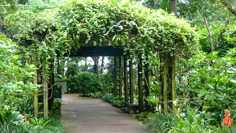 Arbor at Singapore Botanic Gardens