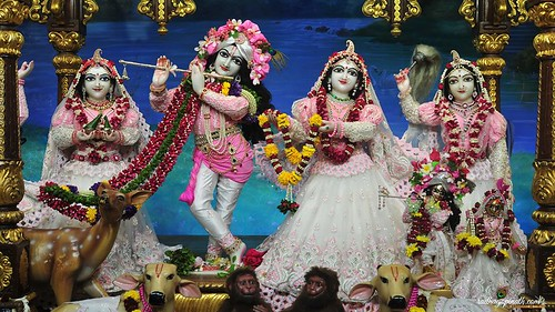 ISKCON Chowpatty Deity Darshan 10 Jan 2020