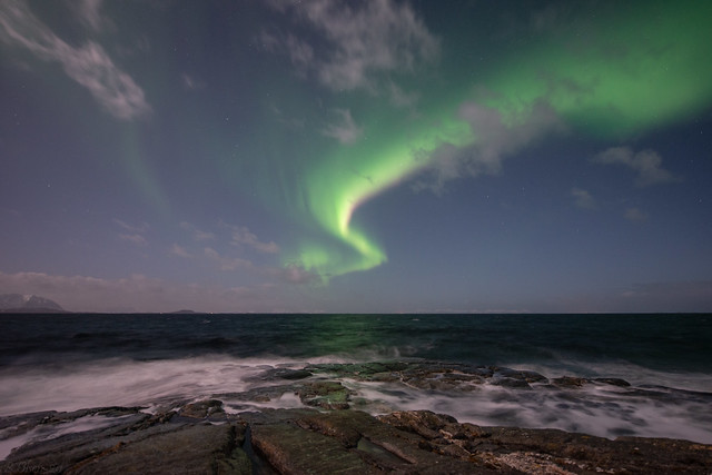 Moonlit aurora by the seashore