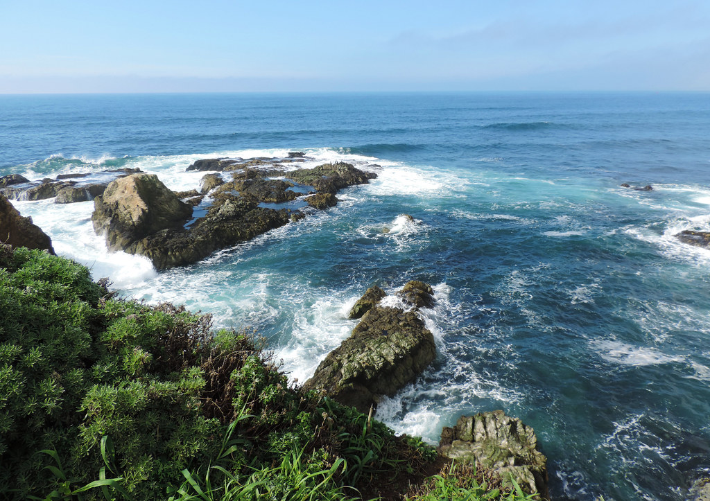 Tomales Point Trail, Point Reyes National Seashore