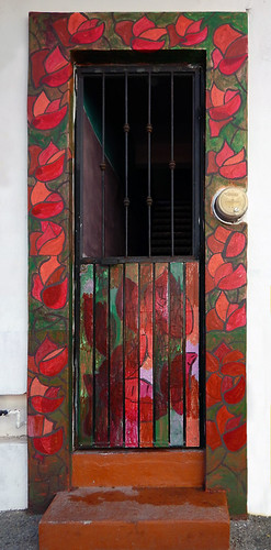A red flowered mural on a door in Puerto Vallarta, Mexico