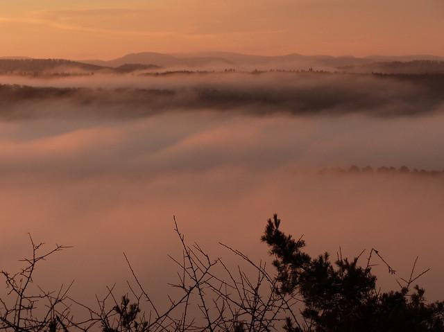 Fog After Sunrise