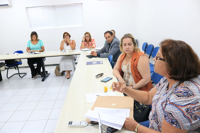 Reunião Rede Materna e Infantil I Região de Saúde