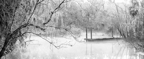 bw monochrome trees lake cold chilly winter dock nature inspirational beauty atmosphere cinematic mist misty naturalbeauty landscape sunrise