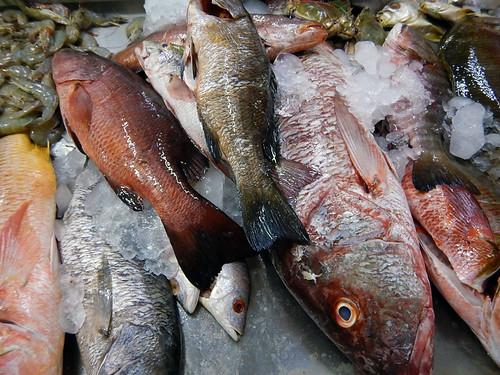 Fish for sale in the market in Manzanillo, Mexico