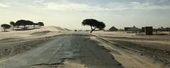 Sahara, Mauritanian roadtrip