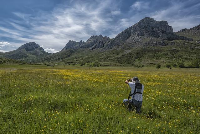 Primavera en el Valle de Arbás