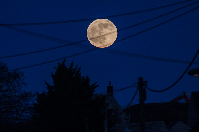 Rising Full Moon (Wolf Moon) in a Telegraph Wire Hammock! 10/01/20