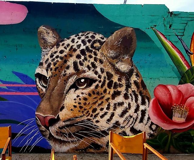 GRAFITTIS BARCELONA 2020