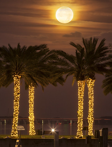 canon5dmkii canonef400mmf56l florida lakemonroe sanford moon moonset supermoon landscapeimage sammysantiago samuelsantiago fineart walldecor photography