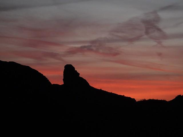 Sunset Day 1 Kofa SR601767