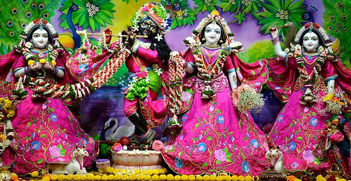 ISKCON Nasik Deity Darshan 11 Jan 2020