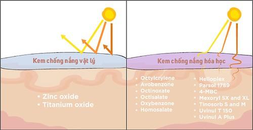 kem chống nắng vật lý và hóa học