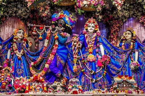 ISKCON Mayapur Deity Darshan 11 Jan 2020