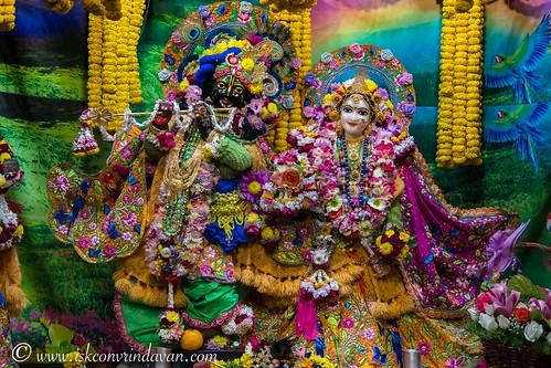 ISKCON Vrindavan Deity Darshan 11 Jan 2020