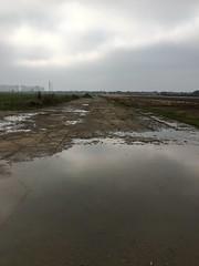 Downham Market Perimeter Track