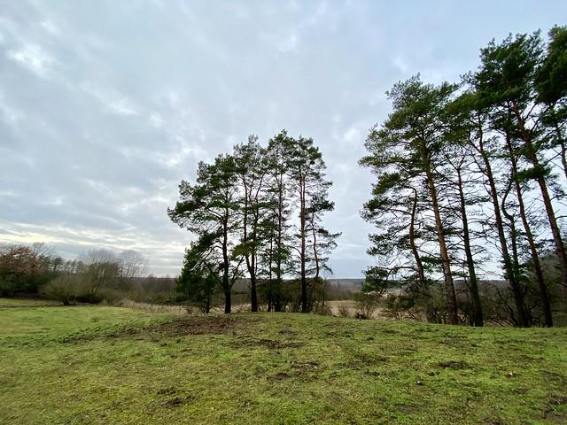 Naturschutzgebiet Lange Dammwiesen