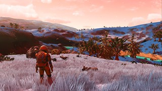 white grass - hadn't seen since Atlas Rises!