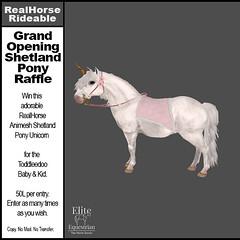 Grand Opening Shetland Pony Raffle