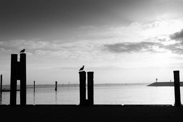 A silent winter day at the harbour