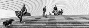 Gootchaï 's Photoblog: Les escaliers !