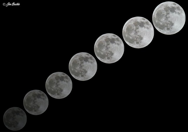 Moon * Луна * Luna * Lune * Mond * Lua * 月亮