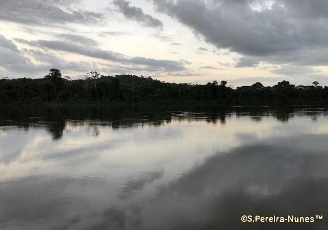 Suriname River at Bergendale Resort later at the twilight, Brokopondo, Suriname