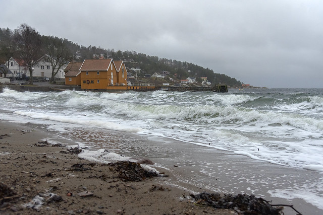 Gale at the coast, Hvitsten, Norway