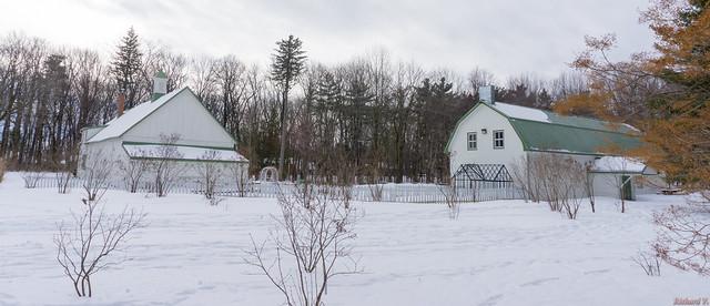 Winter, hiver - Parc du Bois-de-Coulonge, Québec, Canada  - 3413