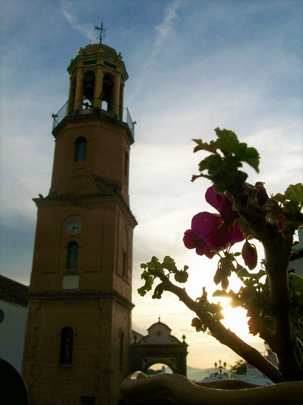 The church tower on the left, and a pink flower on the right. Behind the flower the sky is orange because it is sunset time