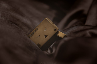 Bed Time for Danbo // 11/01/2020 | by Manadh