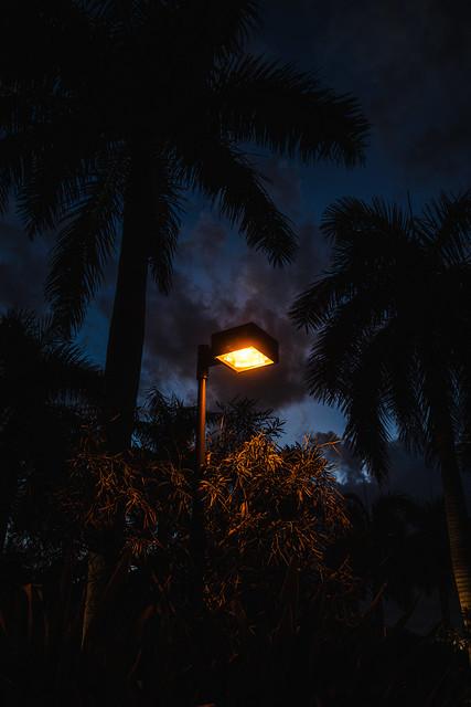 Evening Light - Sanibel/Captiva Island, Florida