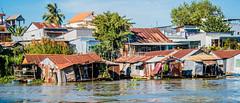 2019 - Vietnam-Avalon-Châu Đốc - 8 - Châu Đốc River Floating Homes