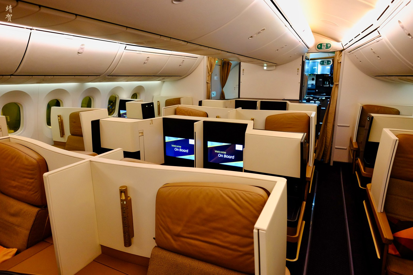 Business Class cabin on the 787