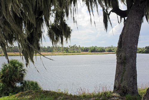 trees clouds river landscape scenery florida spanishmoss mound crystalriver